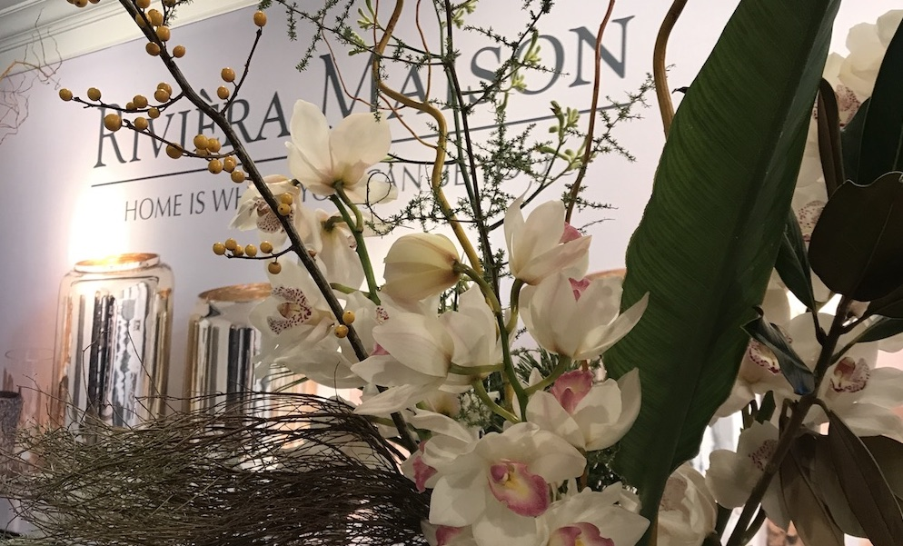 Cymbidium en Rivièra Maison: Elegant en Style