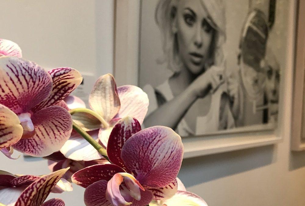 Orchideeën zijn hip en maken happy