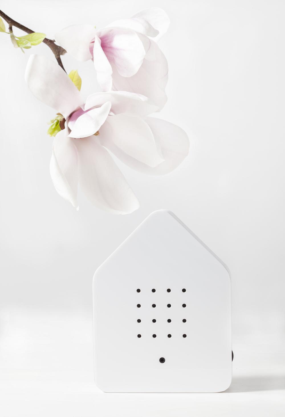 Zwitscherbox: De perfecte tool voor ontspanning